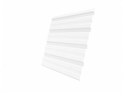 Профнастил С10R 0,35 PE RAL 9003 сигнальный белый